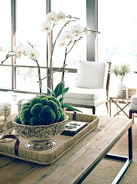 Bringing Personality to Coffee Table Decor Megan Morris