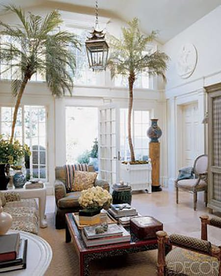 Making a Fresh Statement with Large Indoor Plants   HomeandEventStyling.com