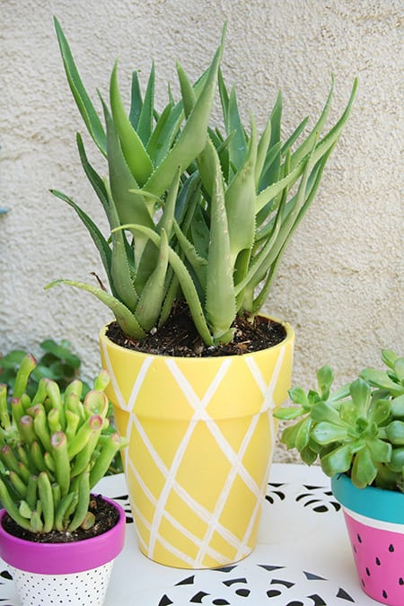 10 Fun and Creative DIY Projects for the Summer | HomeandEventStyling.com