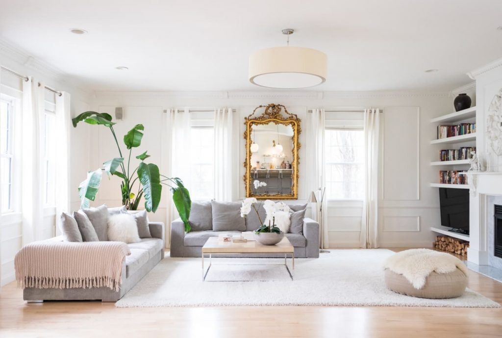 Living room with gray sofas, white rug, warm white walls, and large palm plant.