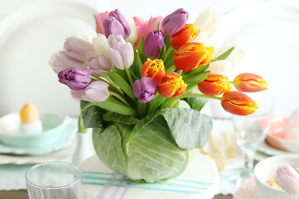 An arrangement of tulips inside a cabbage vase.